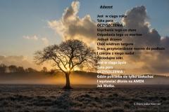 adwent-fr