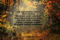 autumn-3359900_1920