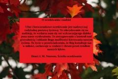 fall-foliage-3705550_1920