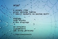 fil-wiez