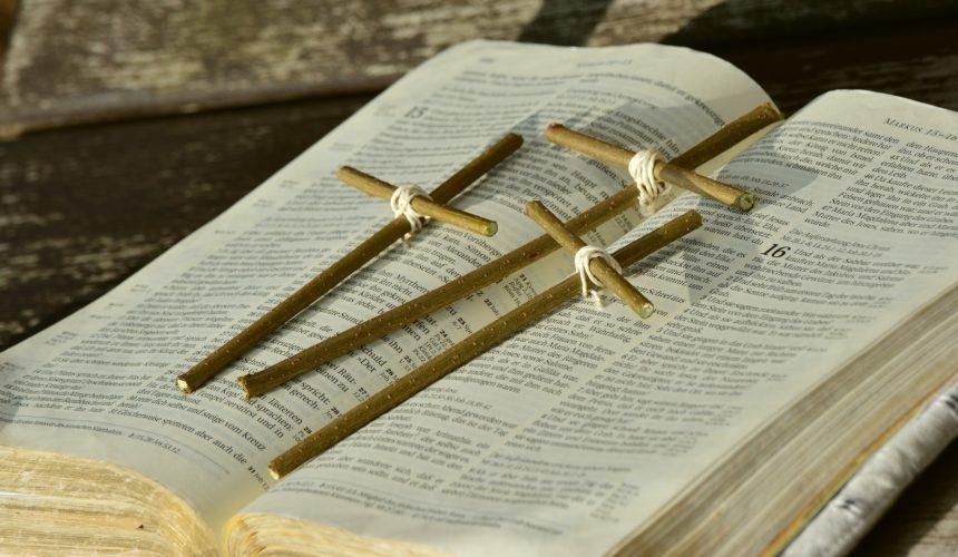 Rozpoczynamy Tydzień Biblijny…